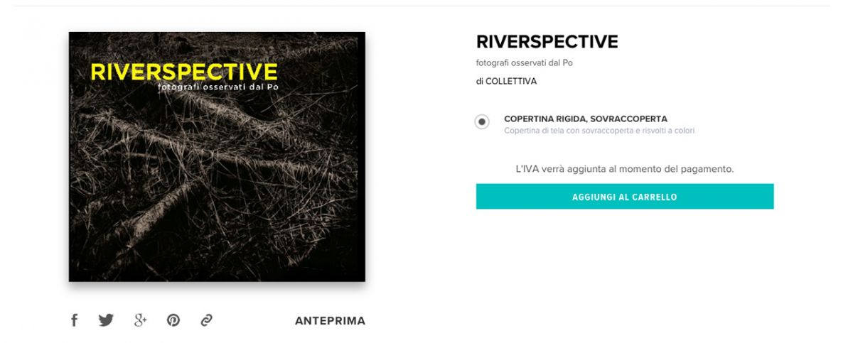 riverspective-blurb
